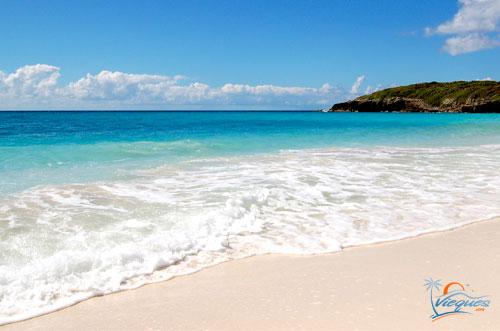 White Sand... - Vieques, PR