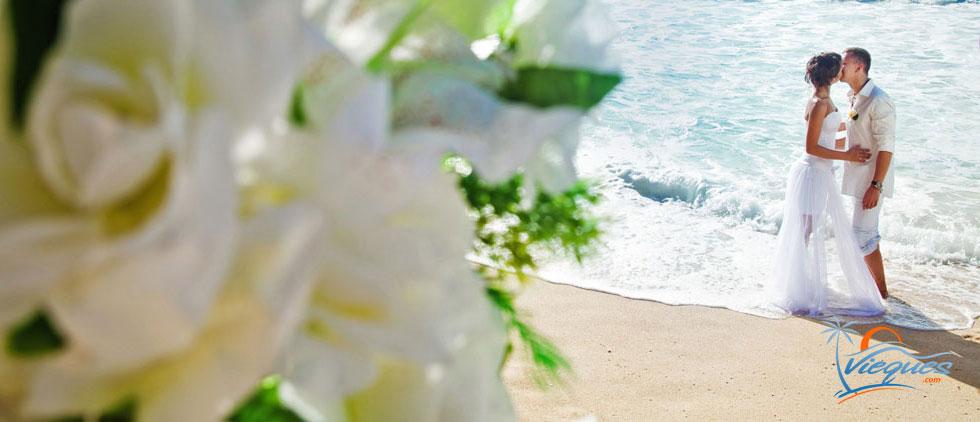 Casate en Isla de Vieques - La Isla mas romantica en el Caribe