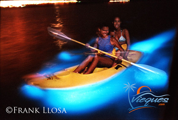 Best Bioluminescent Tours In Puerto Rico