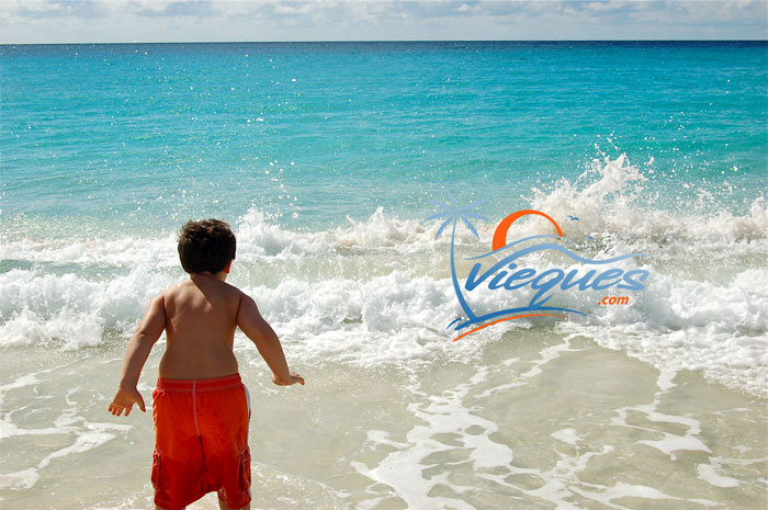 vieques-family-kid-vacation-puerto-rico