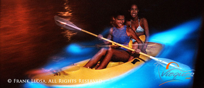 vieques-island-attractions-bio-bay