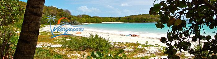 vieques-island-attractions-puerto-rico