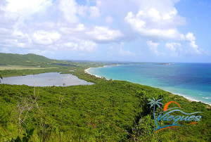 vieques-playa-grande-beach-puerto-rico