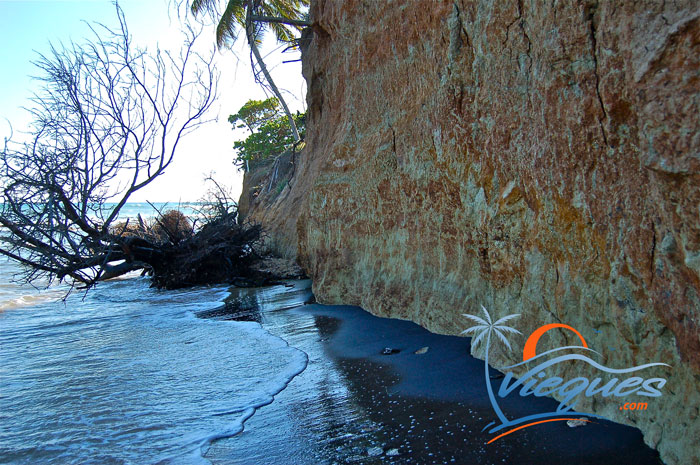 Sit against the cliff wall, let the water caress your body and your feet dig into the soft powdery black sand. Enjoy the views, enjoy life in Vieques.