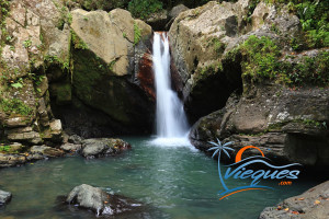 caribbean-attractions-yunque