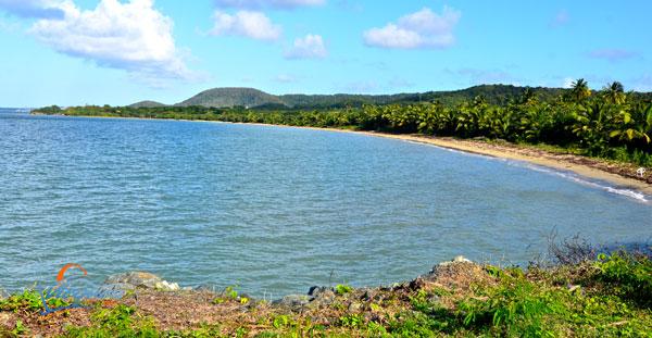 scenic-places-vieques-puerto-rico-mosquito