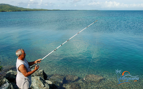 vieques-fishing-rompeolas-mosquito-pier-345q