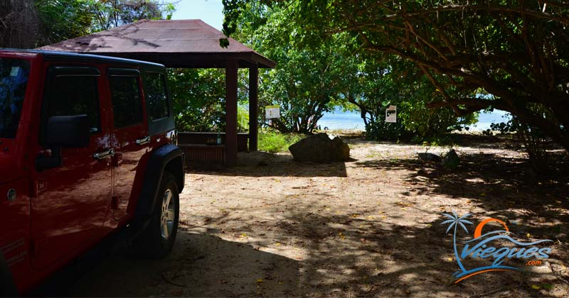 Vieques Island, Puerto Rico - Getting Around - Travel Guide