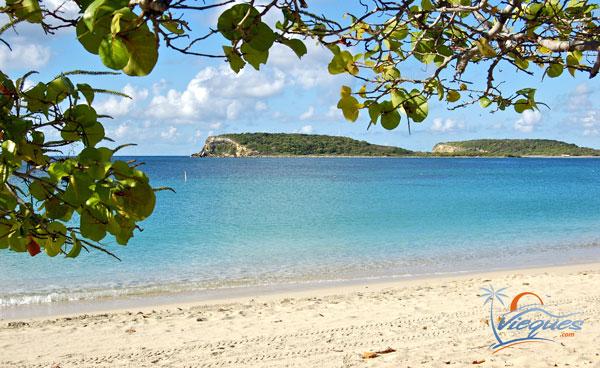 vieques-sun-bay-beach-best-beaches-puerto-rico