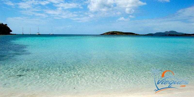 Sun Bay Beach - Vieques island, Puerto Rico / Caribbean