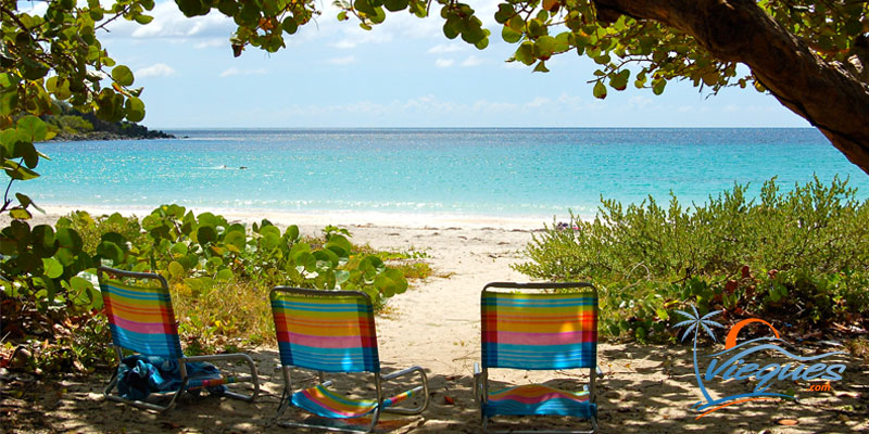 Playa La Plata - Vieques, Puerto Rico / Caribbean