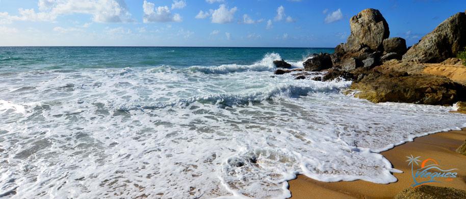 puerto-rico-beaches-vieques-island-473