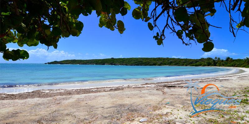 Media Luna Beach - Vieques Island, Puerto Rico
