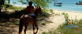 Things to Do in Vieques, Puerto Rico