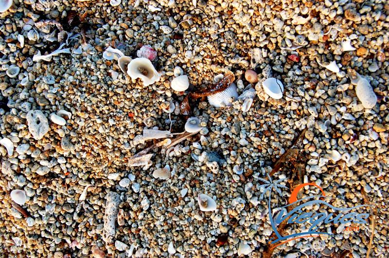 caribbean-sand-puerto-rico-beach-combint