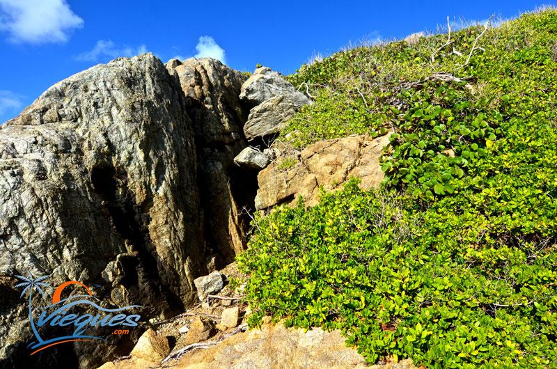Rock wall at Playa Grande, Vieques Island, Puerto Rico