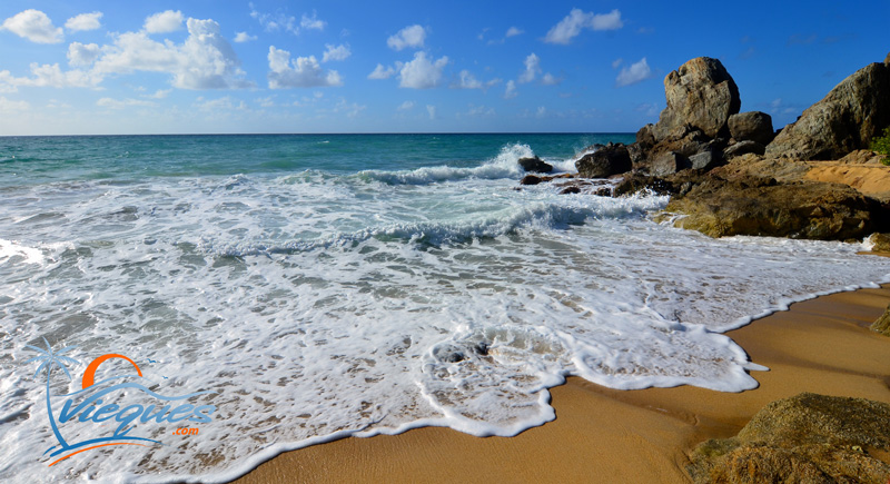 vieques-playa-grande-caribbean-secluded-beaches