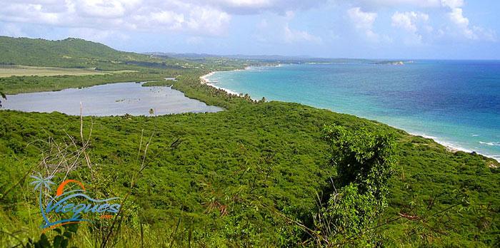 View of Playa Grande Beach and Laguna Grande by Casa Caribe