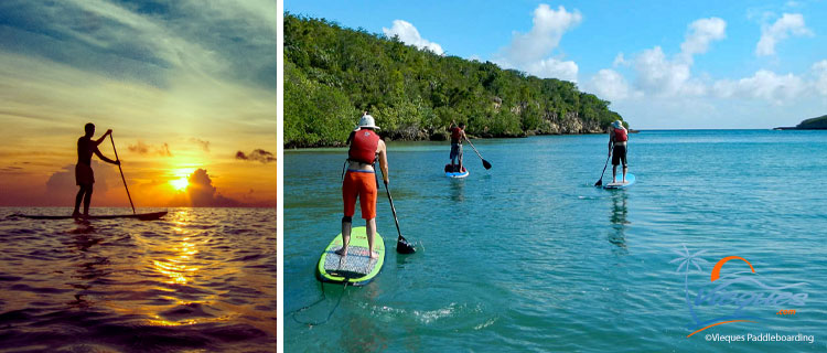 SUP - Stand up paddle boarding - Vieques, Puerto Rico