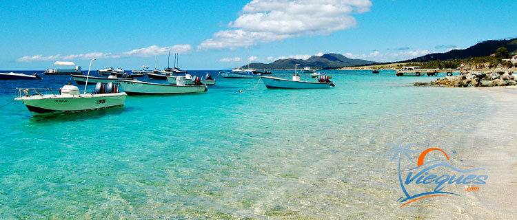 Fishing - Things to do in Vieques Island, Puerto Rico