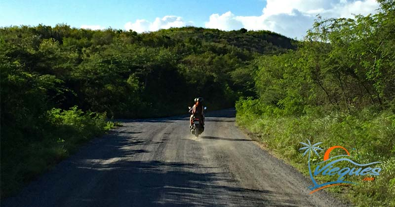 Scooter rentals in VIeques Island, Puerto Rico