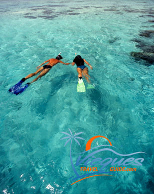 The waters in Vieques are a playground for snorkelers