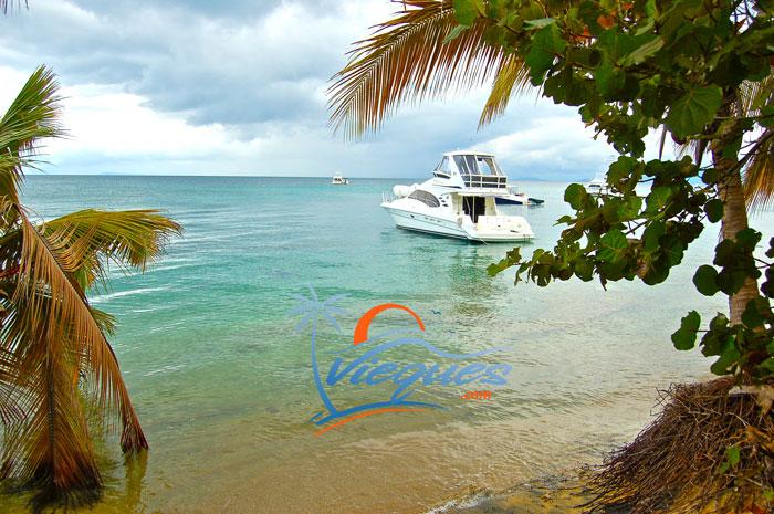 isla-de-vieques-puerto-rico