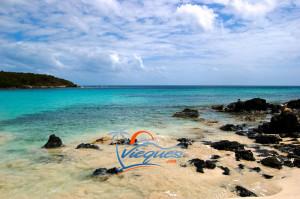 puerto-rico-beaches-vieques-pata-prieta