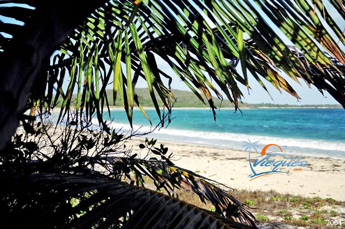 vieques-beaches-blue-beach