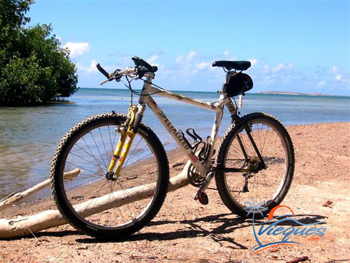 Vieques Bicycling