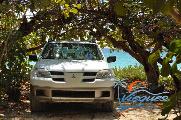 Vieques Car Rentals Guide Deals Easy Booking Tips For Car Rentals
