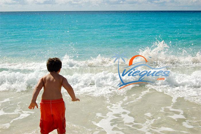 vieques-family-kid-vacation-puerto-rico