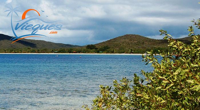 vieques-island-beach-puerto-rico-blue3