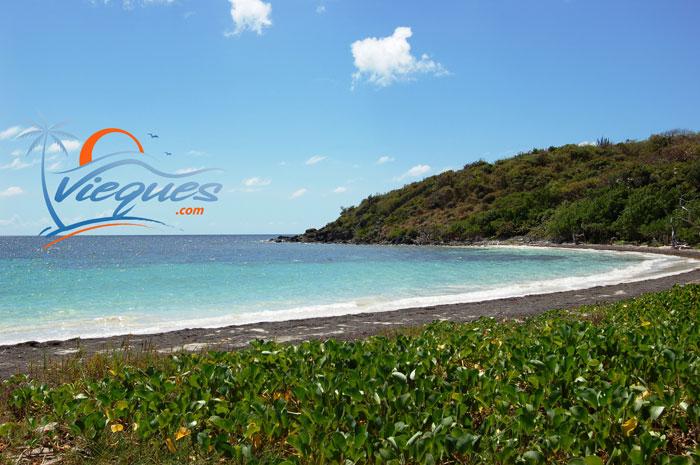 vieques-island-beaches-puerto-rico