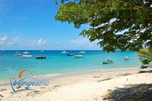 vieques-island-isla-municipality-puerto-rico-esperanza-3