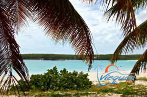 vieques-island-red-beach-caracas-playa