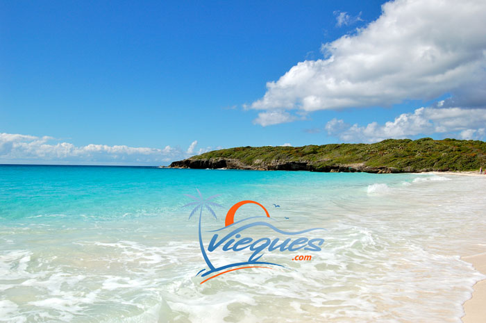 Wedding Island TLC – Location – Vieques, Puerto Rico