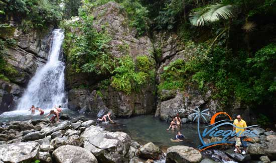 Puerto Rico Attractions - El Yunque Rainforest, Luquillo