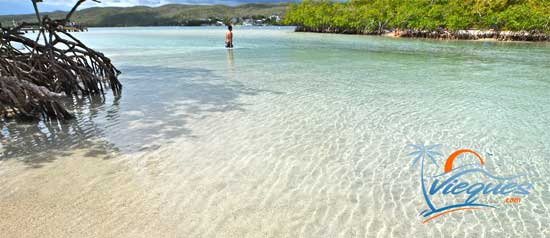 Gilligan's Island, Guanica, Puerto Rico - A great place to visit for a day