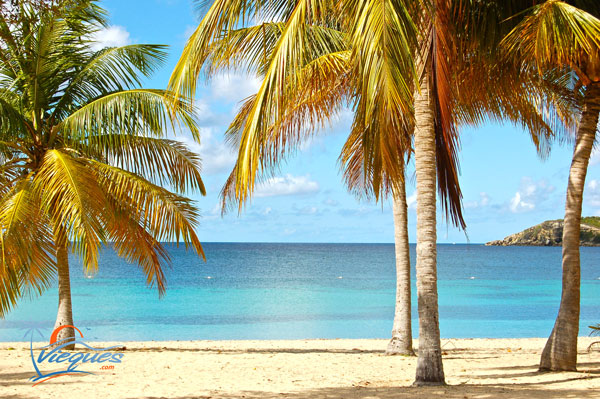 Sunbay Beach Vieques