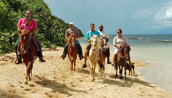 Colon Horseback Riding Tour - Vieques Island, Puerto Rico