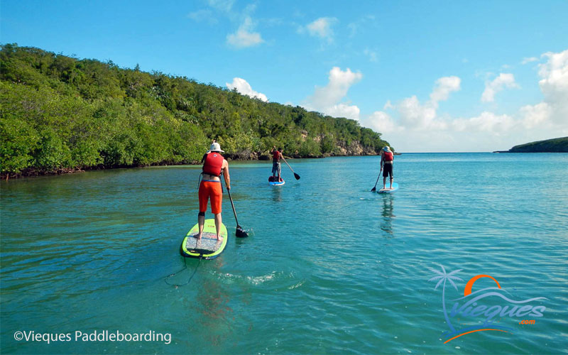 Paddleboarding in Vieques Island, Puerto Rico - Courtesy of Vieques Paddleboarding