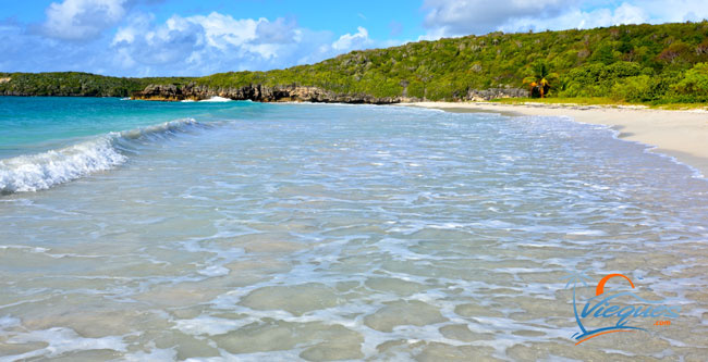 Gentle waves at Caracas Beach in Vieques, Puerto Rico