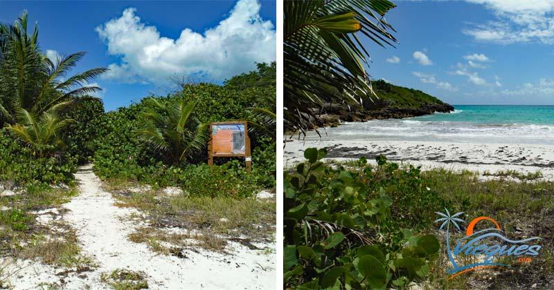 La Playuela HIking Trail - Vieques Island, Puerto Rico