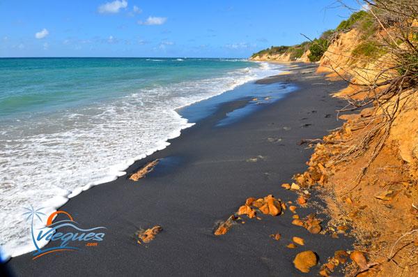 Playa Negra - Black Sand Beach - Vieques, Puerto Rico