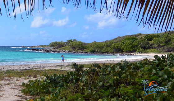 "West end of Playa La Chiva ""Blue Beach"" in Vieques, Puerto Rico"