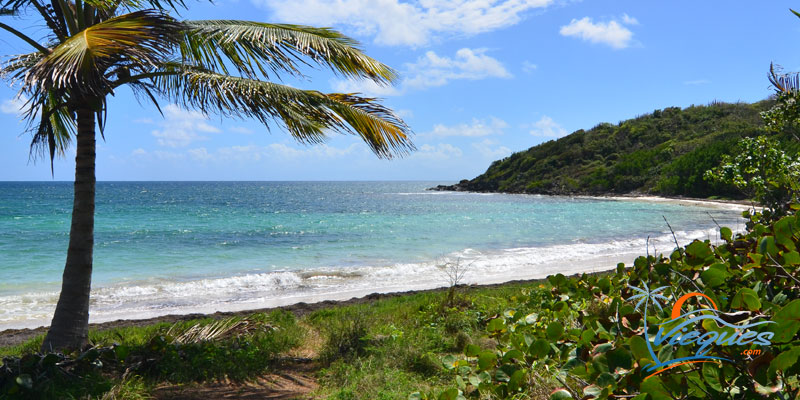 Vieques Beaches Puerto Rico Map Travel Guide Tips - Map of puerto rico caribbean islands