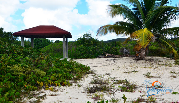 Gazebo at La Chiva Beach - Vieques, Puerto Rico