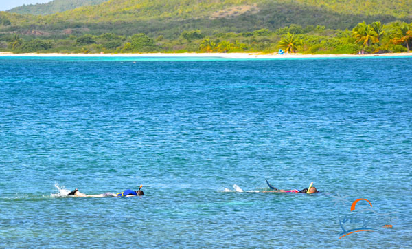 Snorkelers at La Chiva Beach - Vieques, Puerto Rico