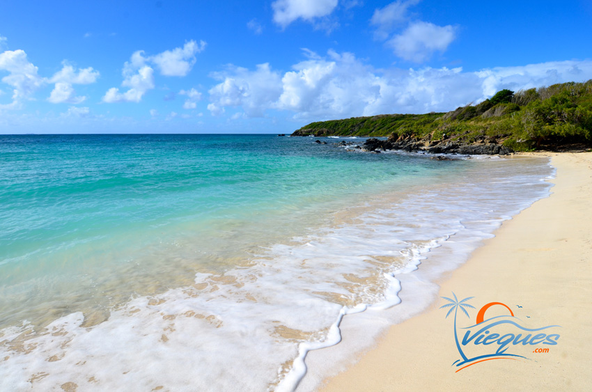 puerto-rico-secluded-beaches-vieques-63